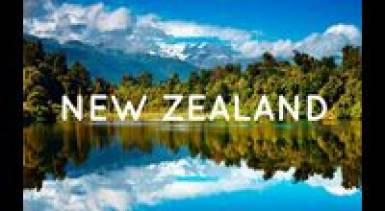 Kiwi Lifestyle in New Zealand